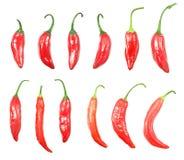 Краснокалильные перцы chili изолированные на белой предпосылке Стоковая Фотография RF