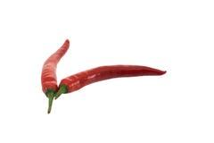 Краснокалильные перцы chili Стоковые Изображения