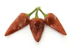Краснокалильные перцы chili Стоковое Изображение RF