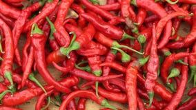 Краснокалильные перцы chili Стоковые Фото