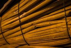 Краснокоричневые тростники для рыбацких лодок стоковое фото
