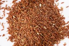 Краснокоричневый рис, белая предпосылка Стоковые Изображения