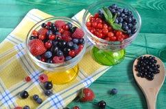 Красно-голубые ягоды на зеленой предпосылке здорового питания стоковые изображения