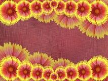Красно-желтые цветки, на бургундской предпосылке ткани яркий состав флористический Карточка на праздник Коллаж цветков Natur Стоковые Фотографии RF