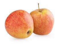 2 красно-желтых плодоовощ яблока Стоковые Фото