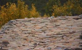 Красно-крыть черепицей черепицей крыша, глина, богатая текстура, старая технология в сельской местности дает проницательность в и Стоковая Фотография RF
