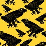 Красно-наблюдают лягушка безшовной картины древообразная также вектор иллюстрации притяжки corel Стоковая Фотография