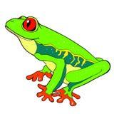 Красно-наблюдают лягушка Woody также вектор иллюстрации притяжки corel Стоковое Изображение