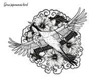 Красно-увенчанное летание вектора крана вручную рисуя стоковая фотография rf