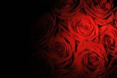 красно Стоковое Фото