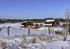 Красные амбары в зиме стоковые изображения rf