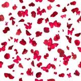 Красные бабочки и лепестки розы Стоковые Фото
