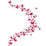 Красные бабочки и лепестки розы Стоковое фото RF
