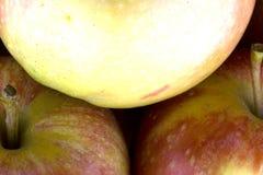 Красные био яблоки, еда стоковое фото rf