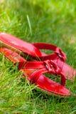 Красные ботинки в траве Стоковое Изображение