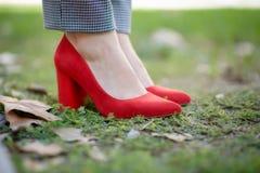 Красные ботинки стоковые фото