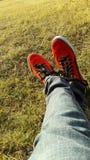 Красные ботинки пумы с обоями травы HD стоковая фотография
