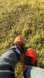 Красные ботинки пумы с обоями травы HD Стоковое Фото
