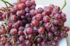 Красные виноградины, группа в составе много красных виноградин Стоковые Изображения RF