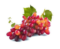 Красные виноградины длинный пук и листья изолированные на белой предпосылке Стоковое фото RF