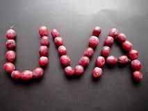 Красные виноградины писать виноградину в испанском языке Стоковое Изображение RF