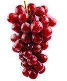 Красные виноградины Стоковая Фотография