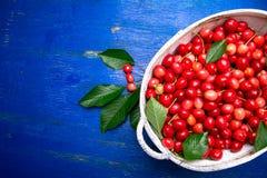 Красные вишни в белой корзине на голубой деревянной предпосылке поднимающее вверх вишни близкое Взгляд сверху скопируйте космос Стоковые Фото