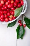 Красные вишни в белой корзине на белой деревянной предпосылке поднимающее вверх вишни близкое Взгляд сверху Стоковое Фото