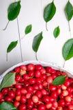 Красные вишни в белой корзине на белой деревянной предпосылке поднимающее вверх вишни близкое Взгляд сверху Стоковая Фотография RF