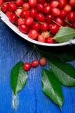 Красные вишни в белой корзине на голубой деревянной предпосылке поднимающее вверх вишни близкое Взгляд сверху скопируйте космос Стоковая Фотография RF
