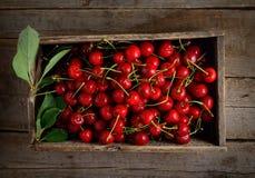 Красные вишни в деревянной коробке на серой предпосылке Стоковое Фото