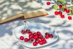 Красные вишни на плите и книге, конце вверх Стоковые Изображения RF