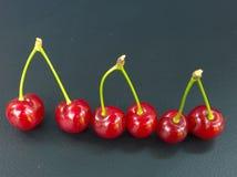 Красные вишни на черной предпосылке Стоковые Изображения RF