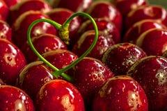 Красные вишни с черенок в сердце формируют стоковые фотографии rf
