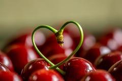 Красные вишни с черенок в сердце формируют стоковое фото rf