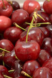 Красные вишни Стоковые Изображения