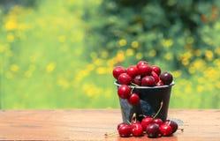 Красные вишни Стоковое фото RF