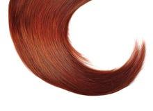 Красные волосы стоковые изображения rf