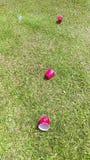 Красные выпивая чашки - rojos vasos Стоковое Фото