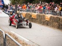 Красные гонщики 2 обезьяны Bull Стоковая Фотография