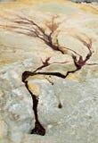 Красные горячие источники Badab-e Surt в северном Иране Стоковое Изображение