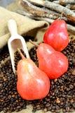 Красные груши Стоковые Фото