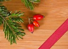 Красные лента и сосна Стоковое Изображение