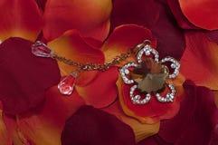 Красные лепестки и ожерелье Стоковое фото RF