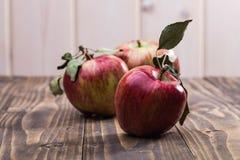Красные желтые яблоки Стоковые Изображения RF