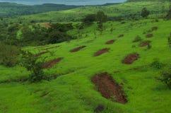 Красные заплаты и красивая растительность горы Стоковое Изображение RF