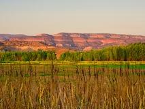 Красные земли от болота на восходе солнца стоковое фото