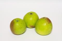 Красные зеленые яблоки изолировано Стоковые Изображения