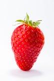 красные зрелые клубники Стоковые Фото