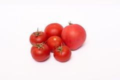 Красные зрелые томаты на белой предпосылке Стоковые Изображения